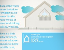 Info-graphic story: The Water We Eat